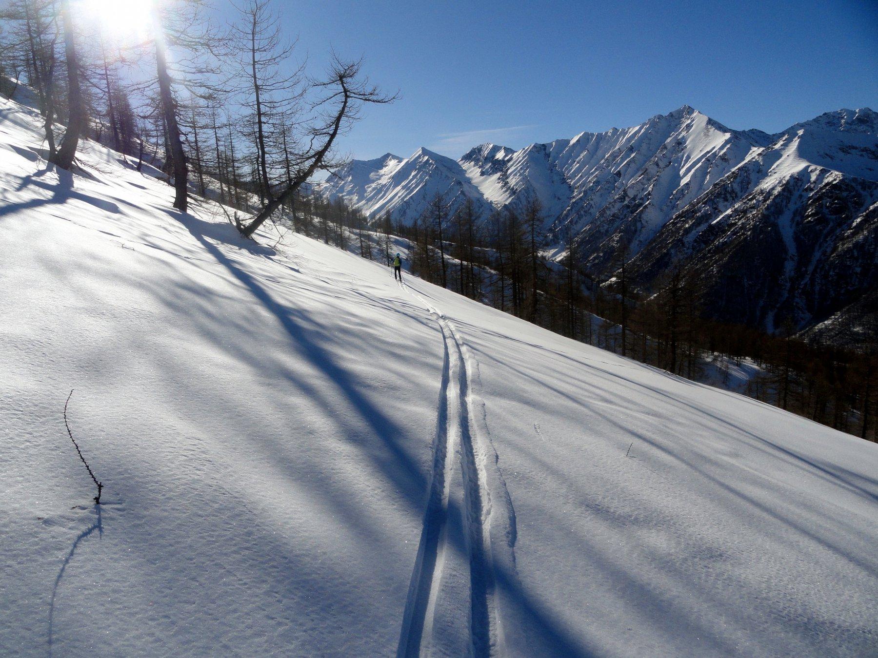 bella neve anche nei boschetti in basso