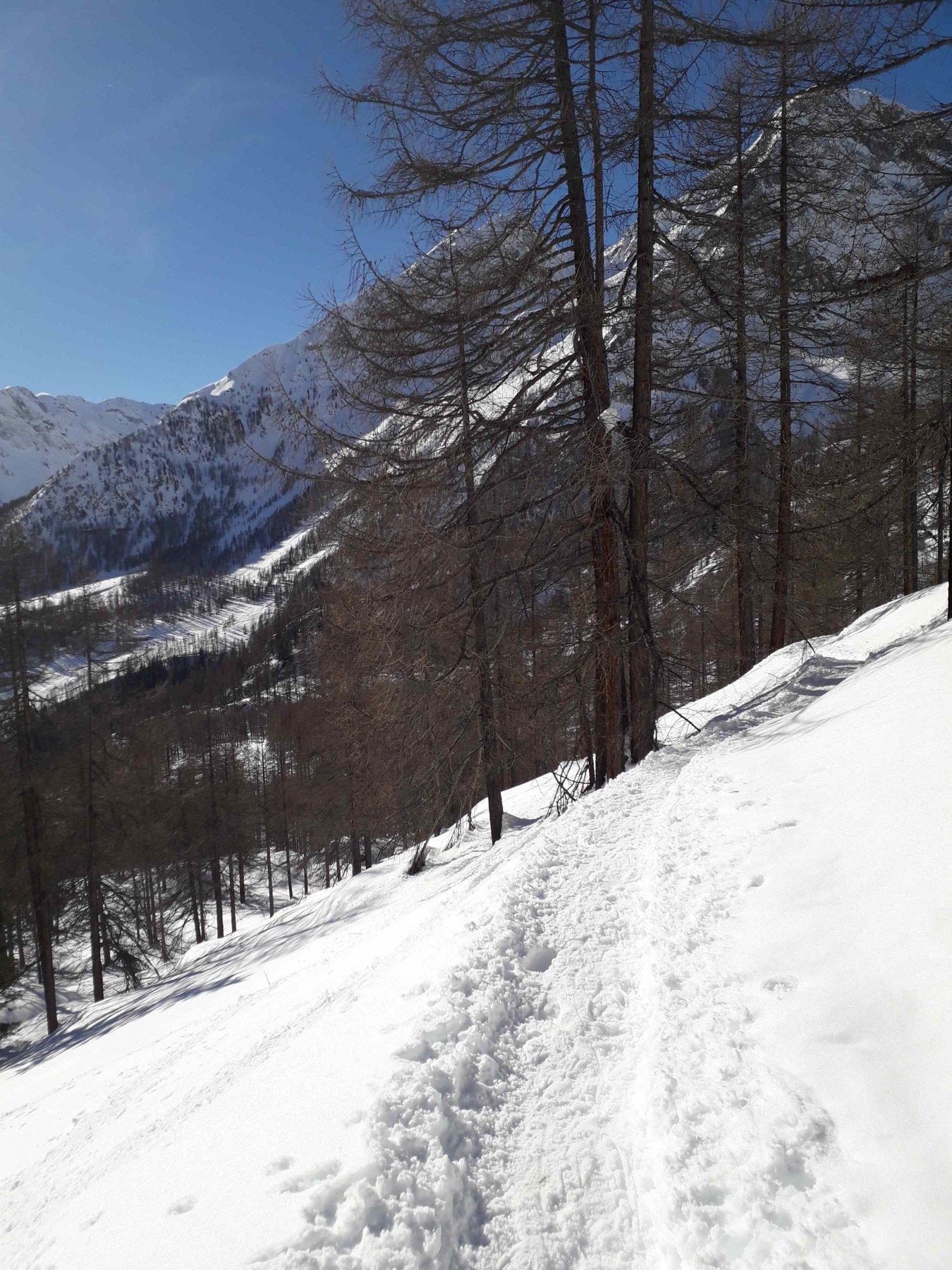 sentiero battuto in prossimita del verra inferiore