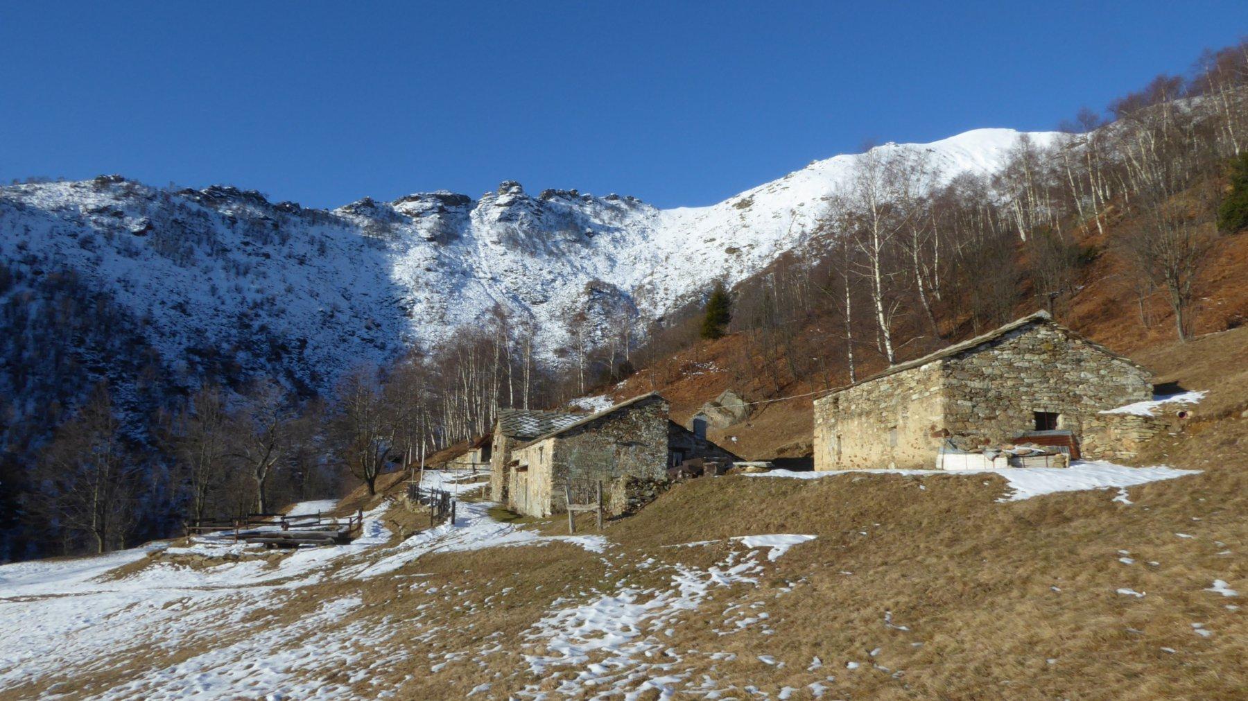 Alpe Bellono