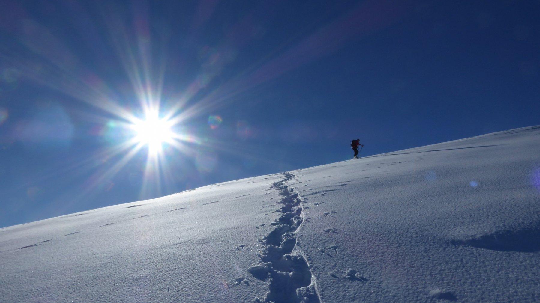 In salita su dorsale all'Alpe Calus