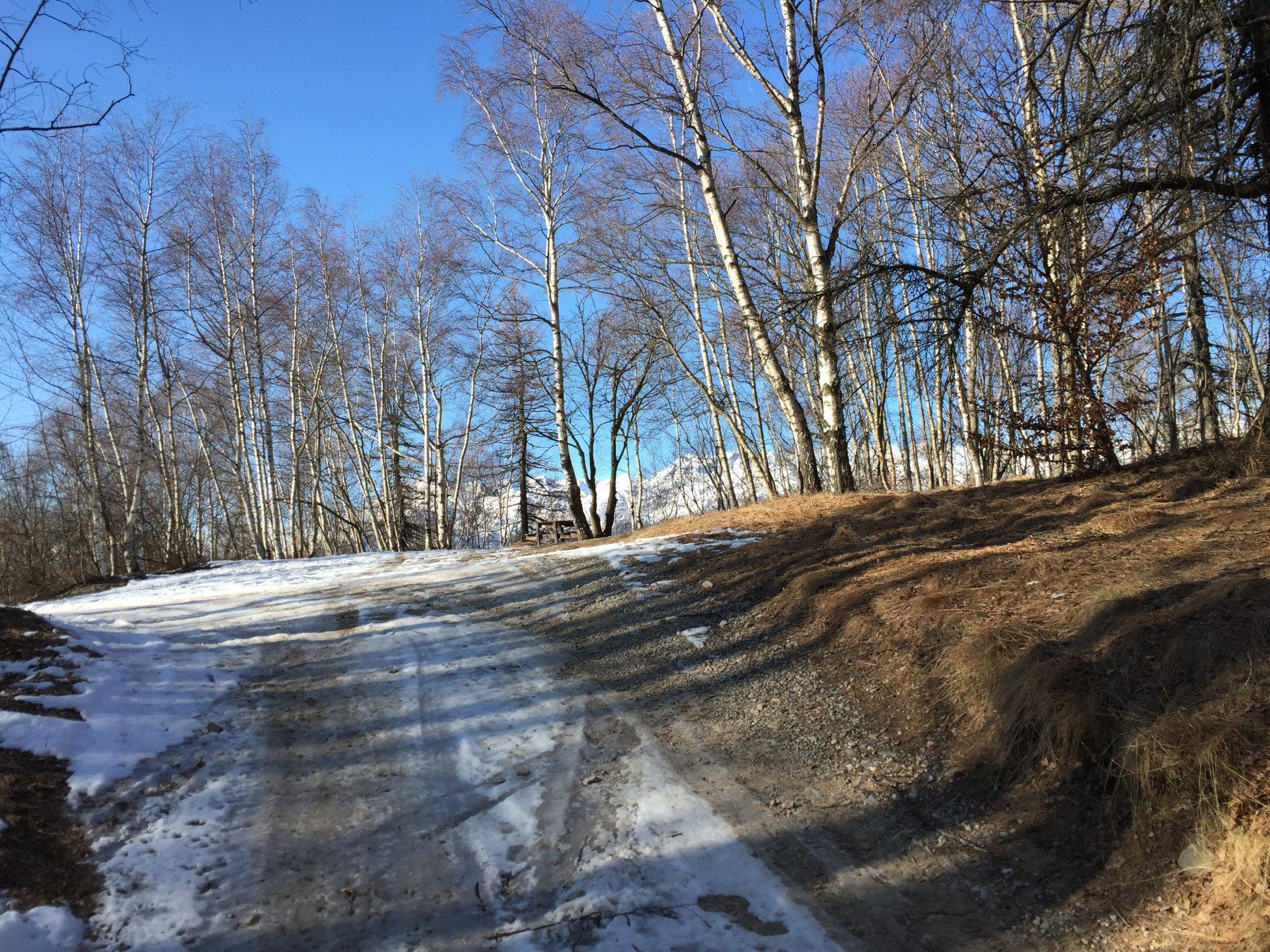 La strada innevata (unico posto in cui la neve si conserva!)