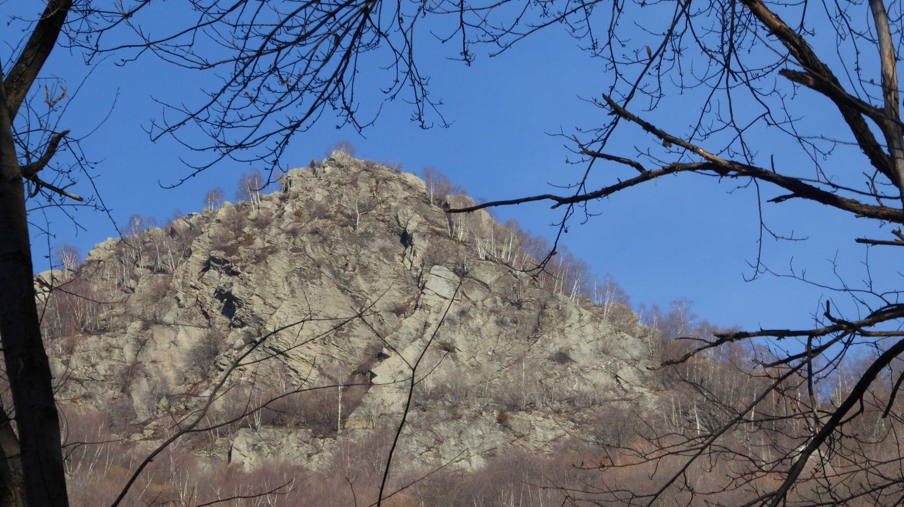 Da uno spiraglio nel bosco, Testa di Pertia, versante sud