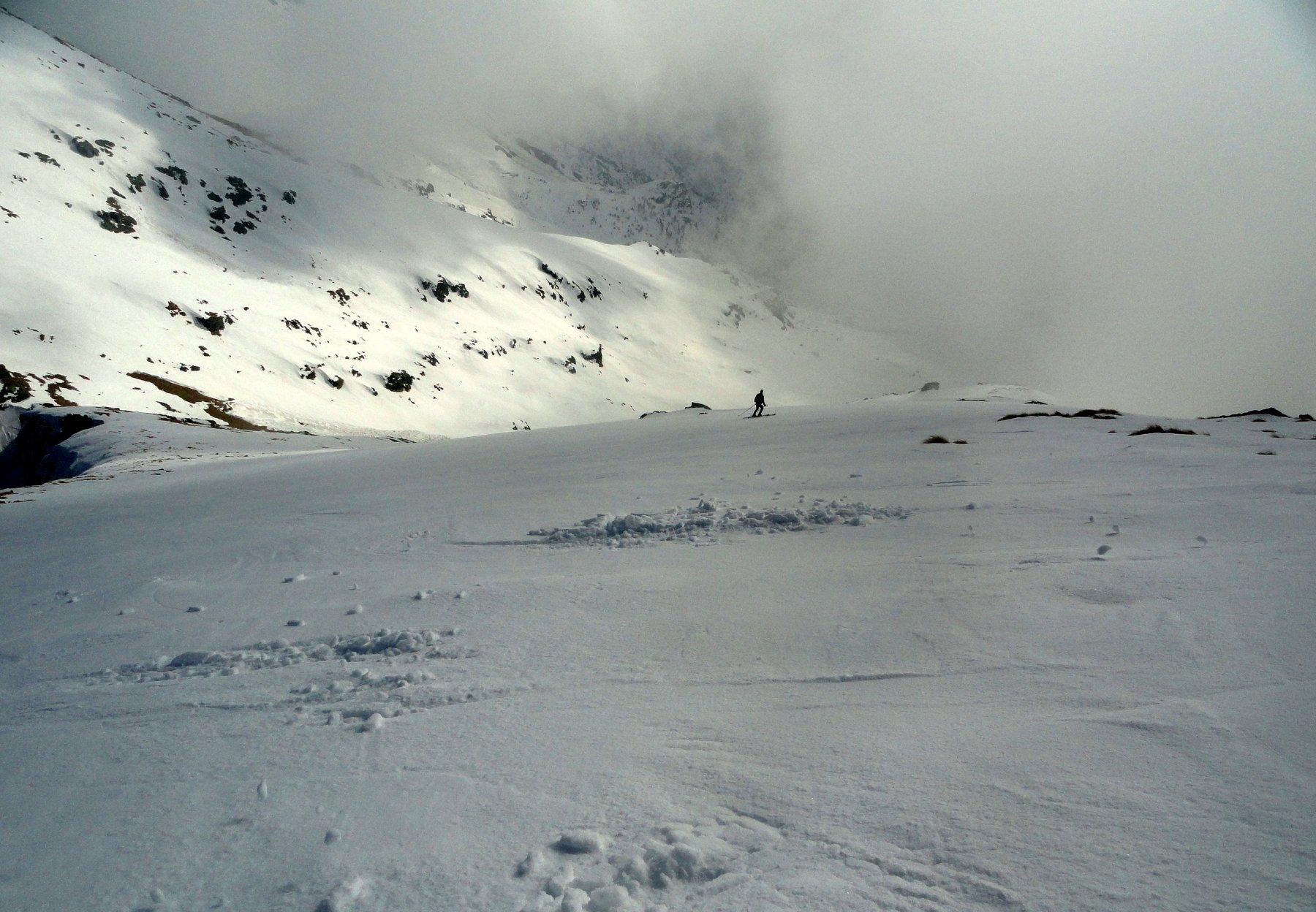 splendida sciata