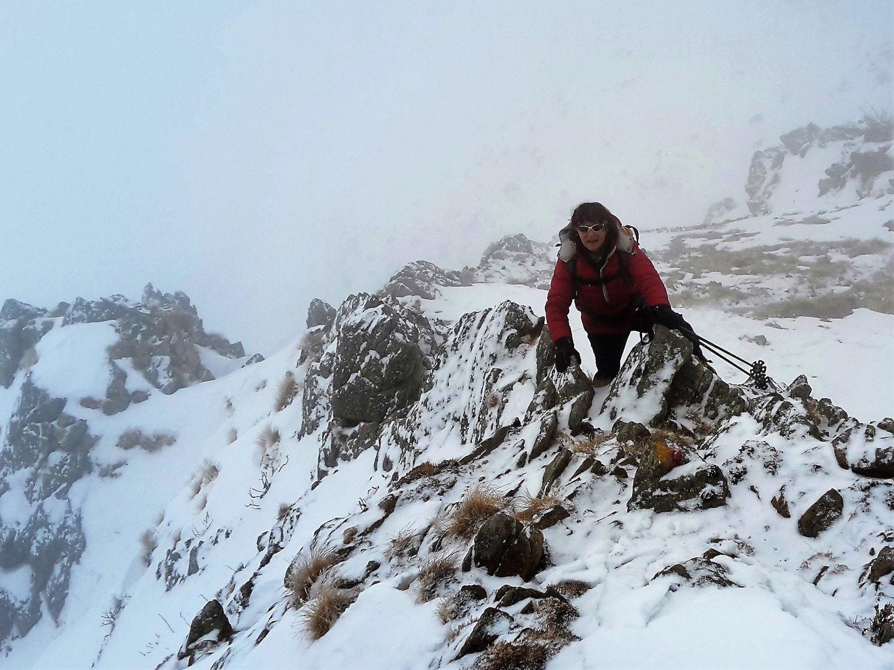 Germana sulla cresta rocciosa