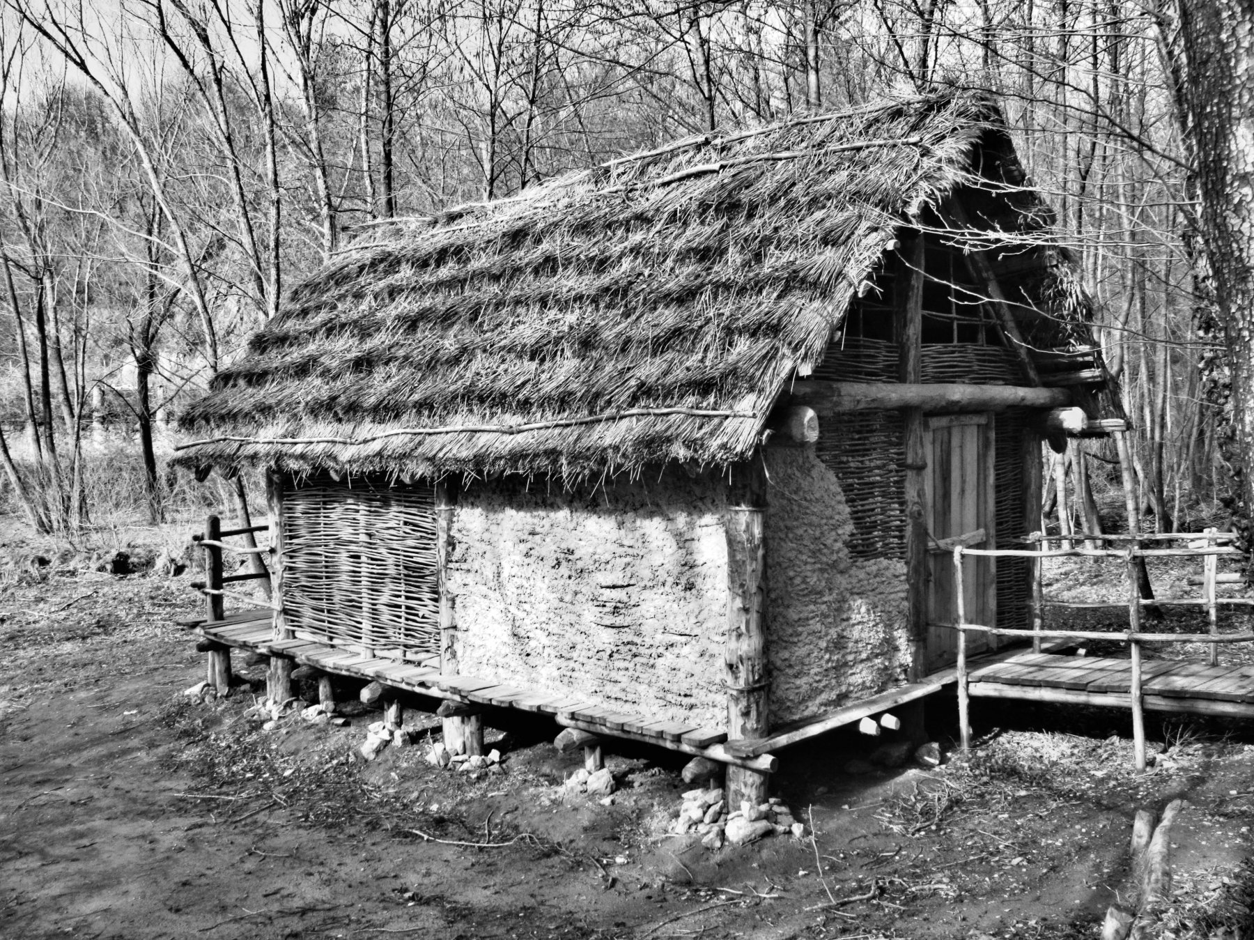 Ricostruzione di capanna di 6500 anni fa