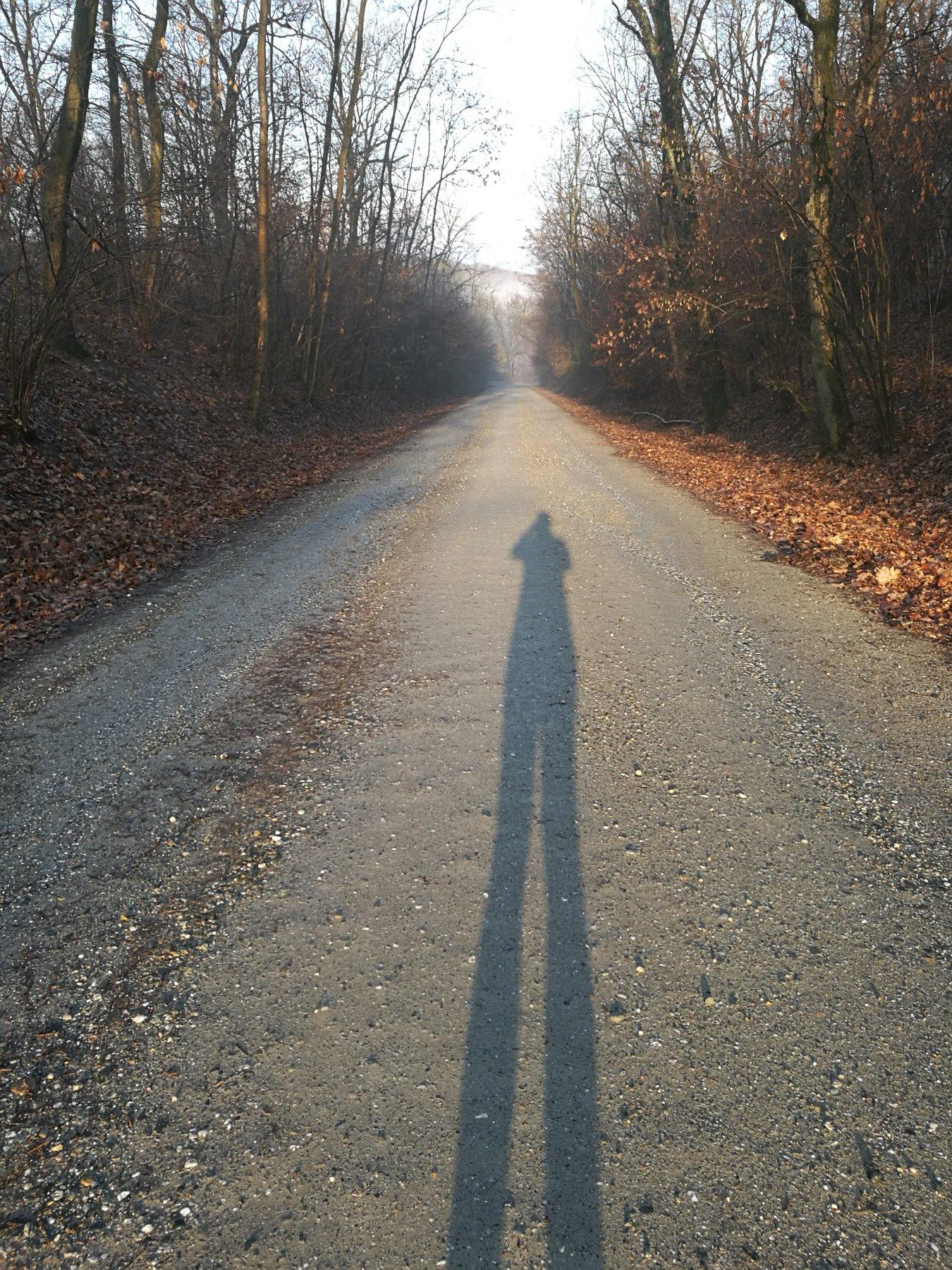La lunga ombra che indica il percorso