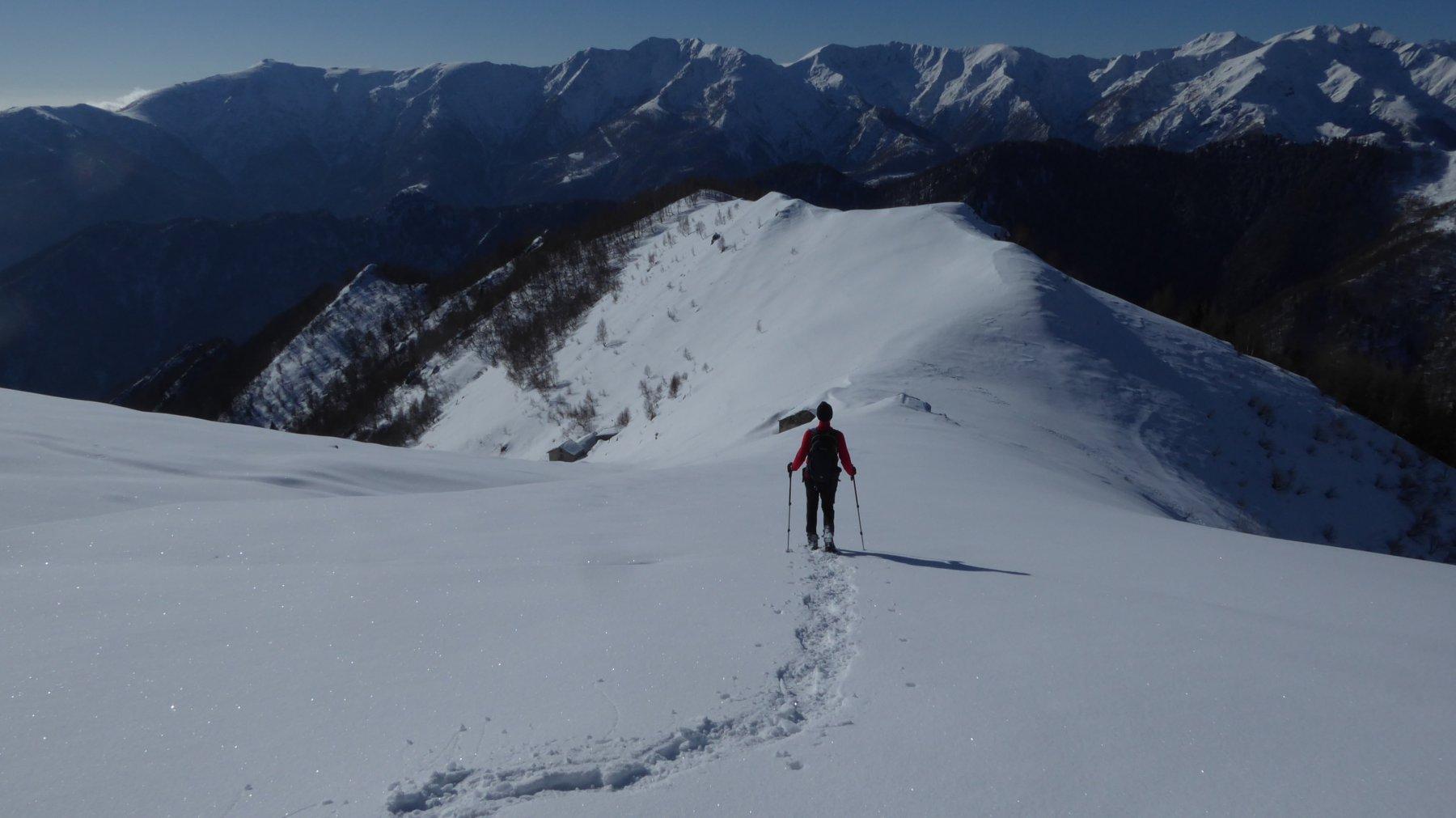 In discesa all'Alpe Saler