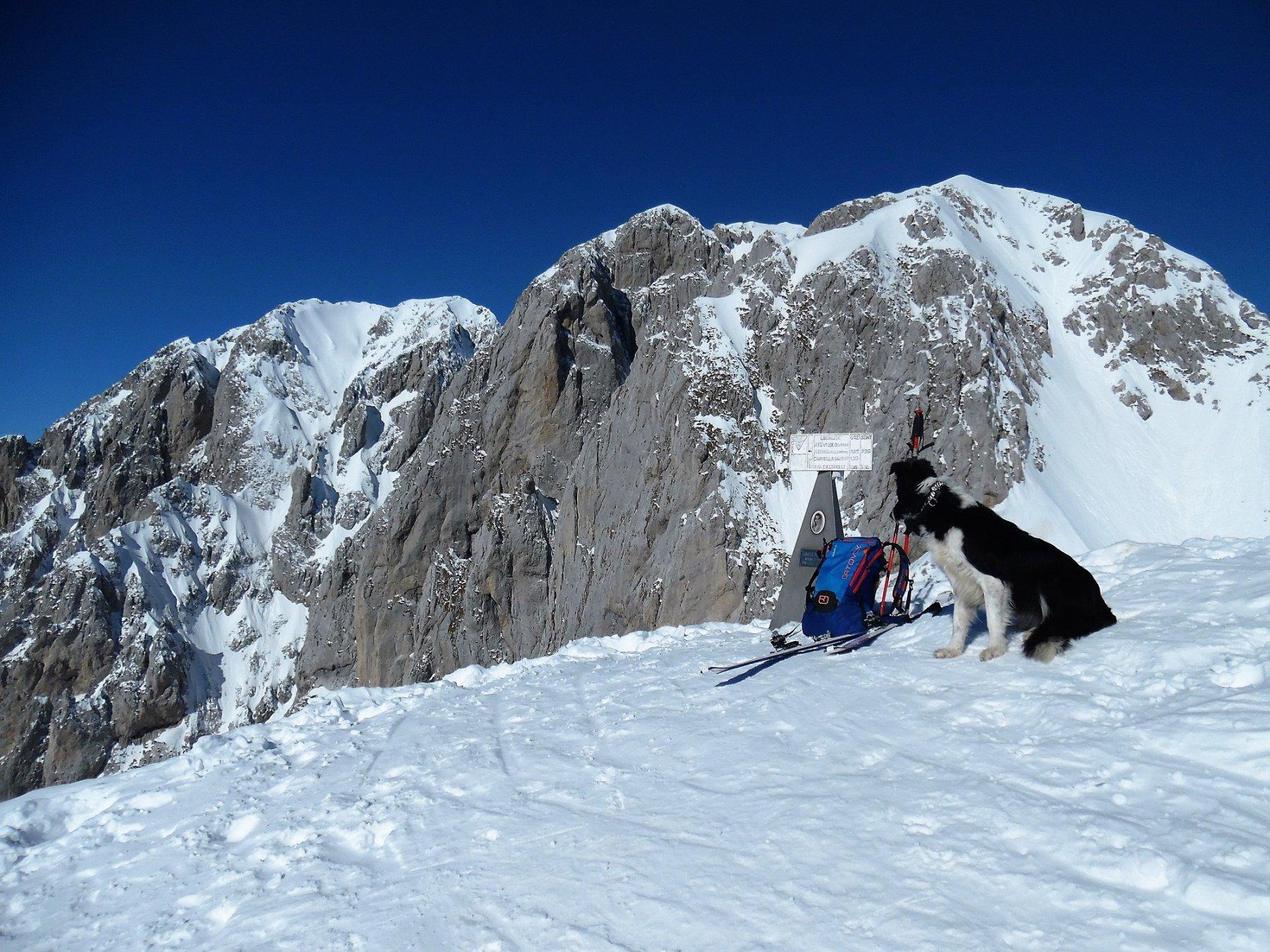 In cima al Visòlo 2369 m. Dietro la Presolana