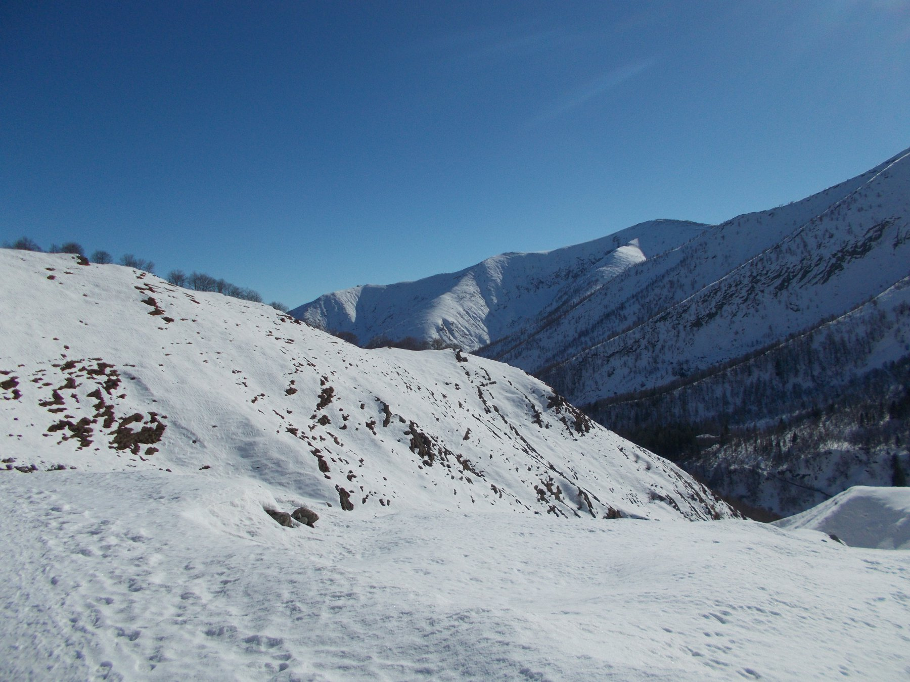 Poco prima dell'Alpe Sellery Inferiore vista sulla P.ta dell'Aquila.