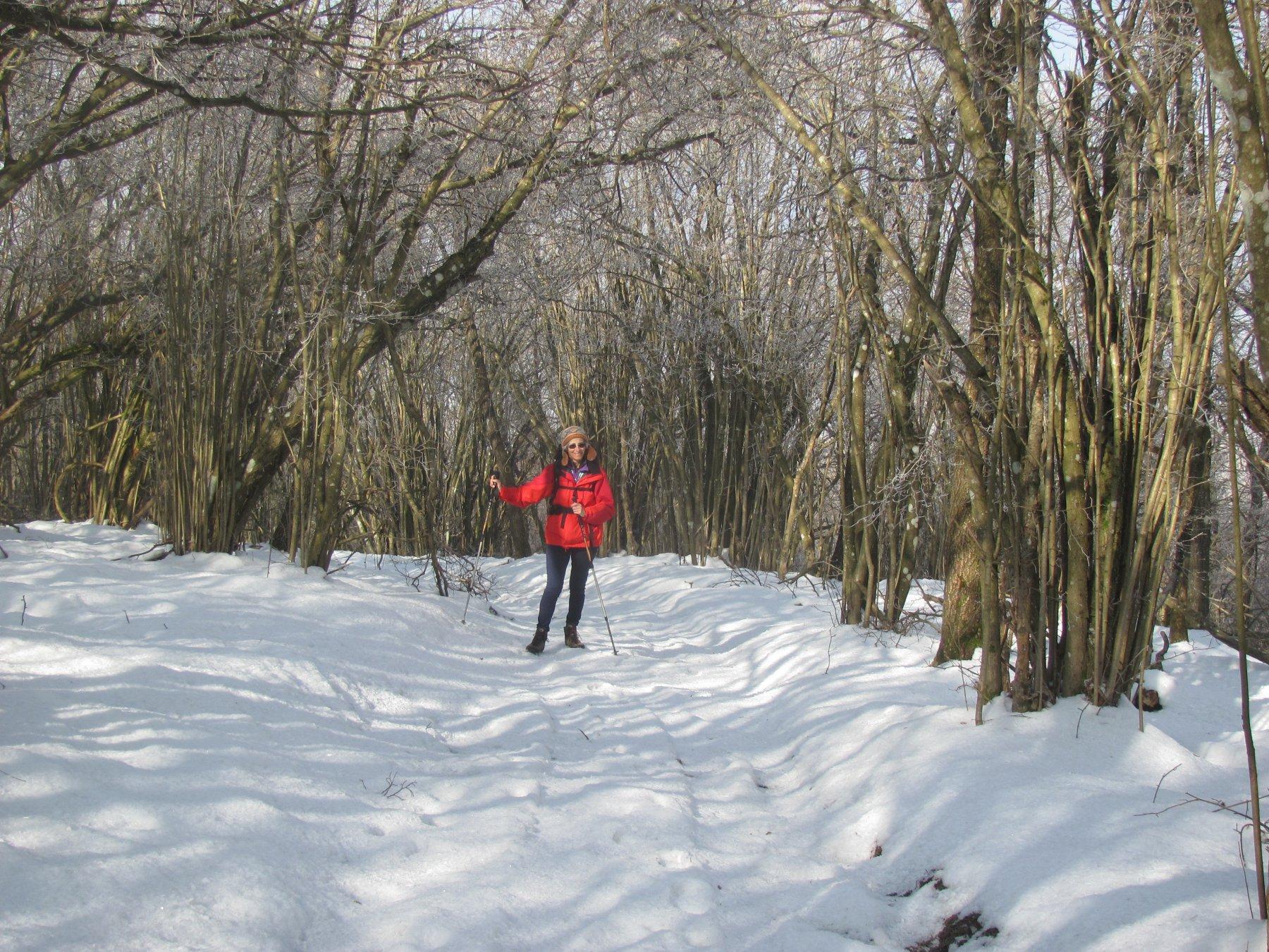 neve nella parte superiore del percorso