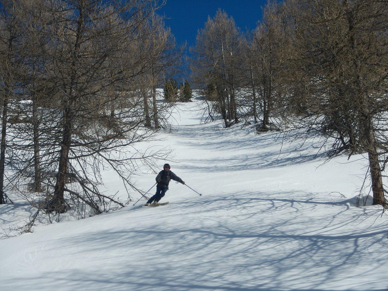 ottima neve anche nei tratti di bosco