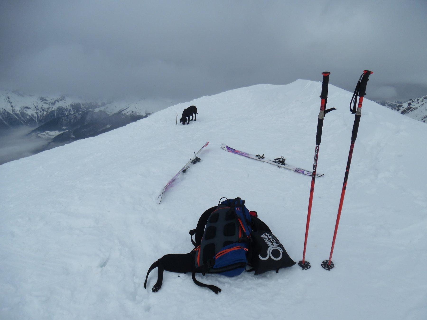 Monte Avert 2085 m