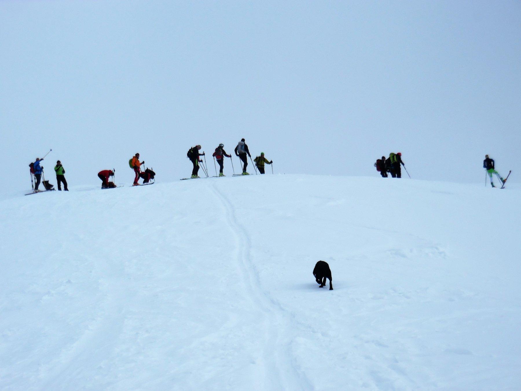 Vetta dell'Avert 2085 m
