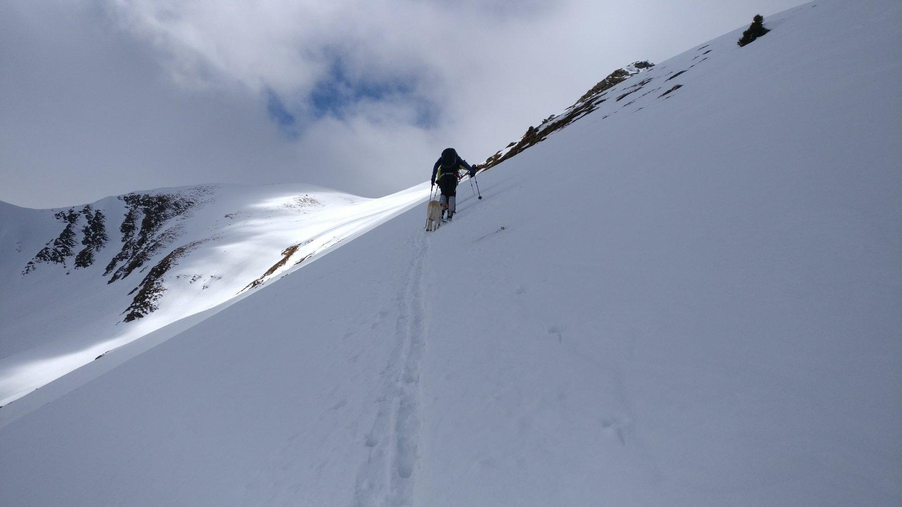 Traverso da Passo Tartano alla cima