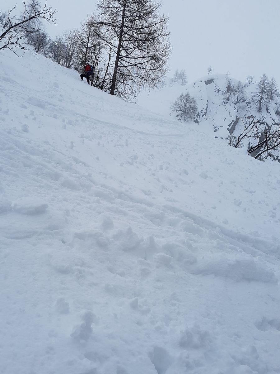 sventagliata di gnocchi di neve ad ogni curva
