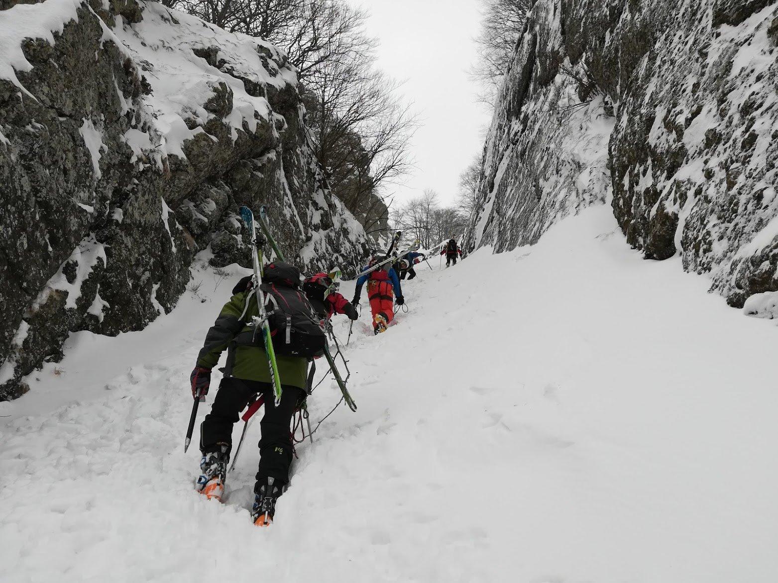 Maggiorasca (Monte) da Rocca d'Aveto per il Canale Martincano 2018-02-25