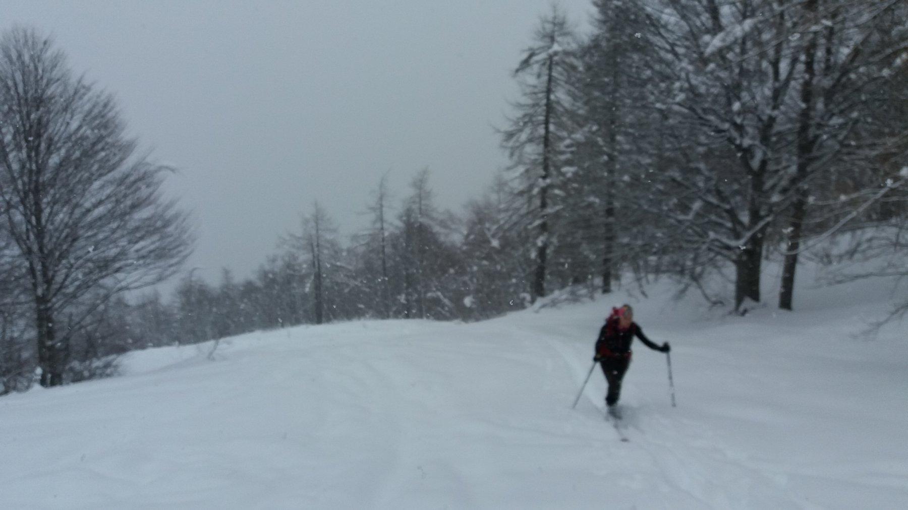Saliti sotto una fitta nevicata