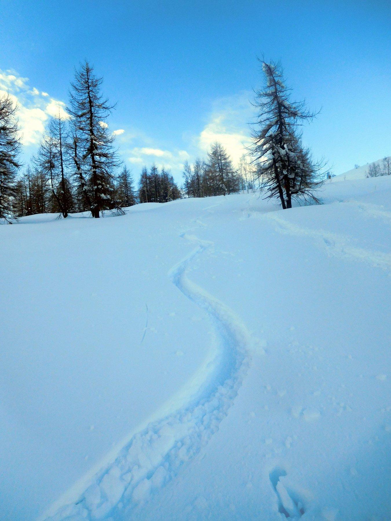 bella neve qui