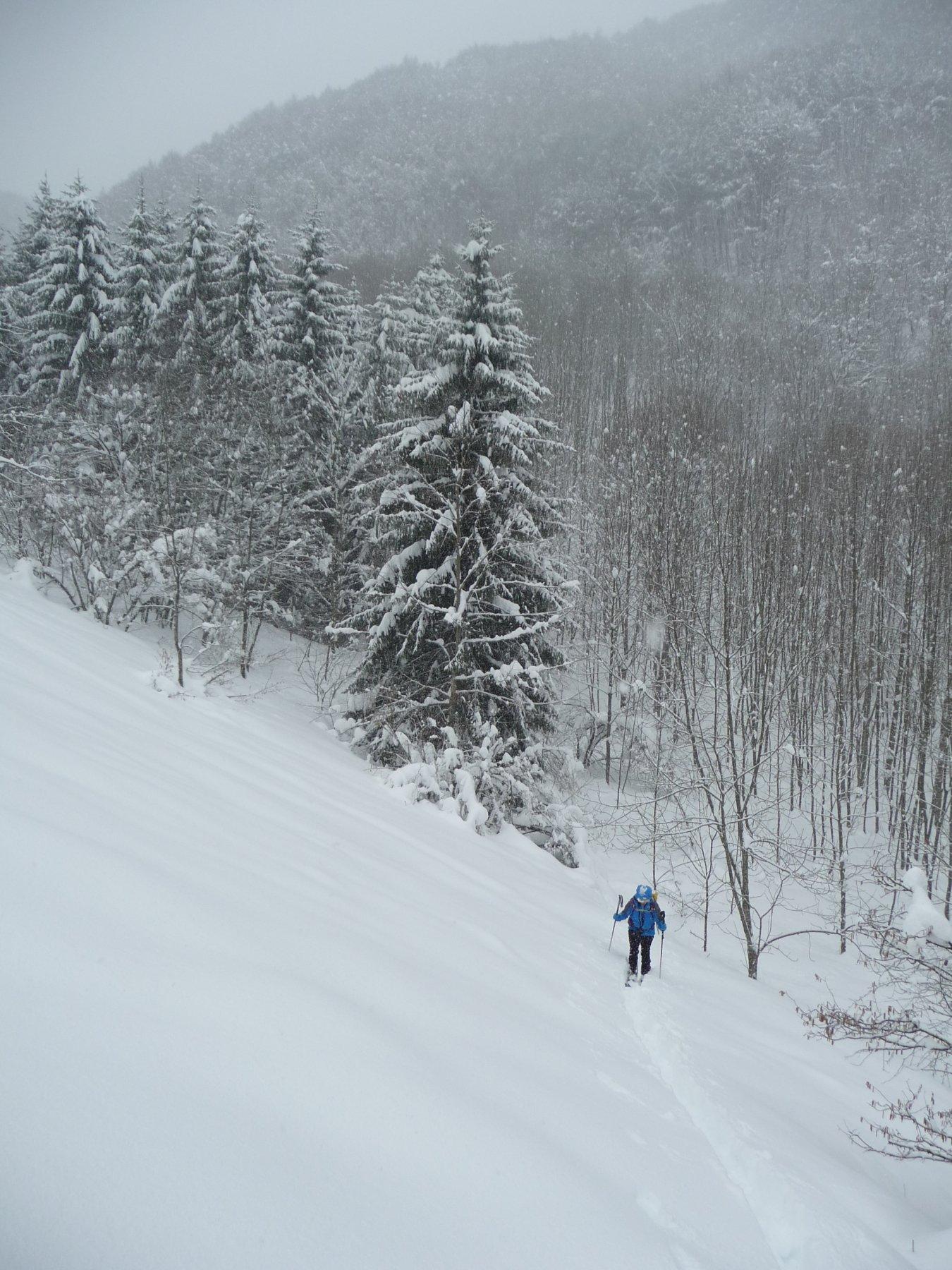 Nevicata abbondante