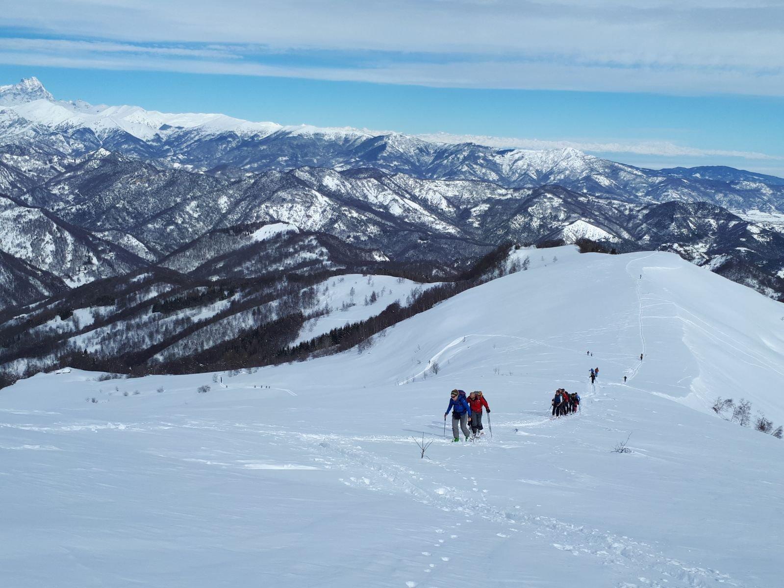 pendio verso l' Alpe