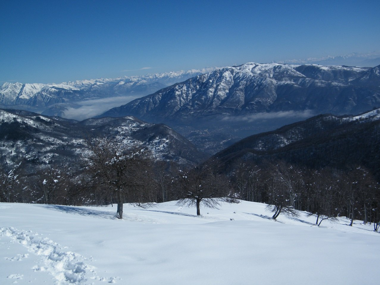 Panorama verso il Mottarone, da poco sotto la cima.