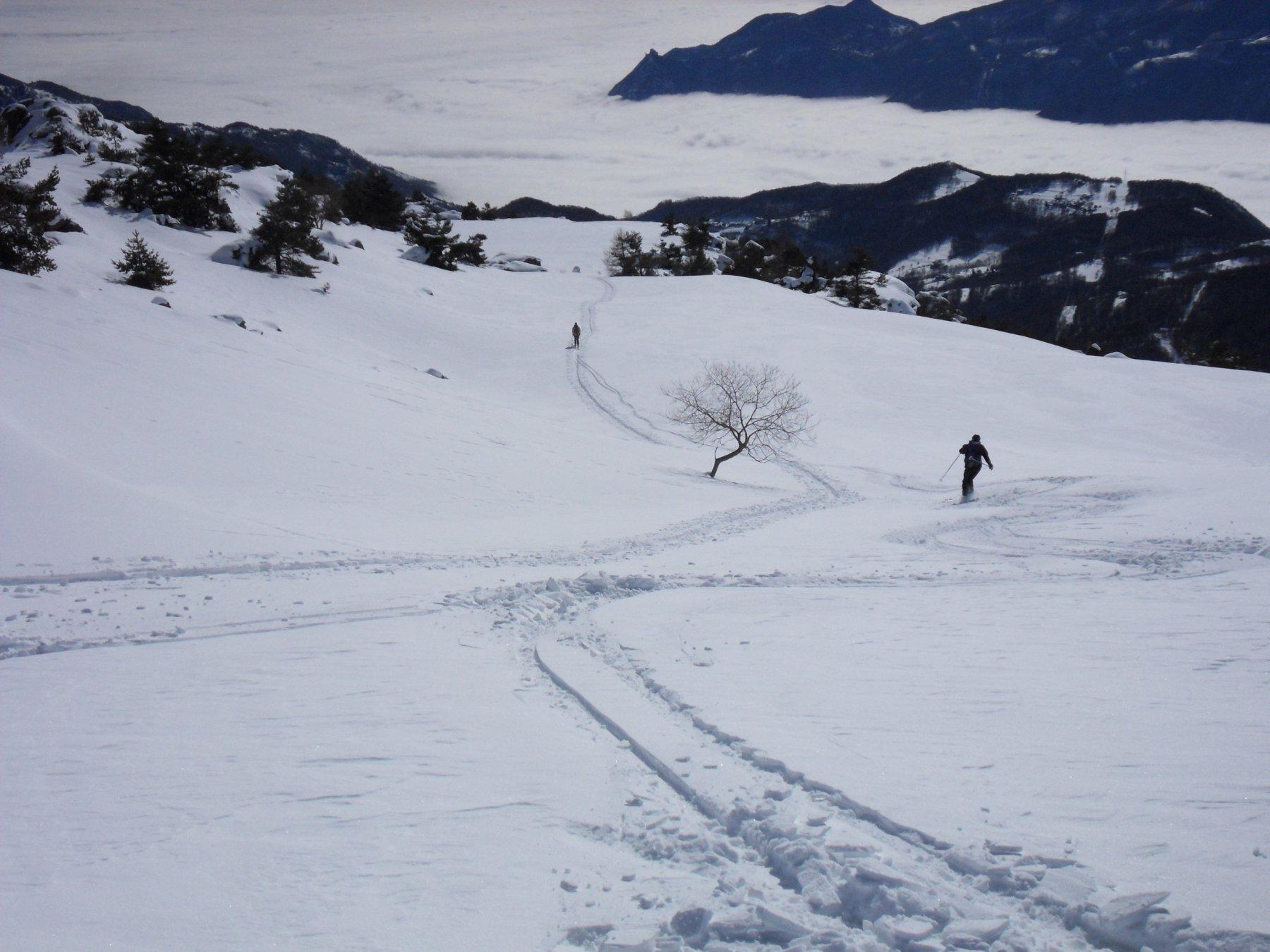 in discesa verso l'alpe Formica