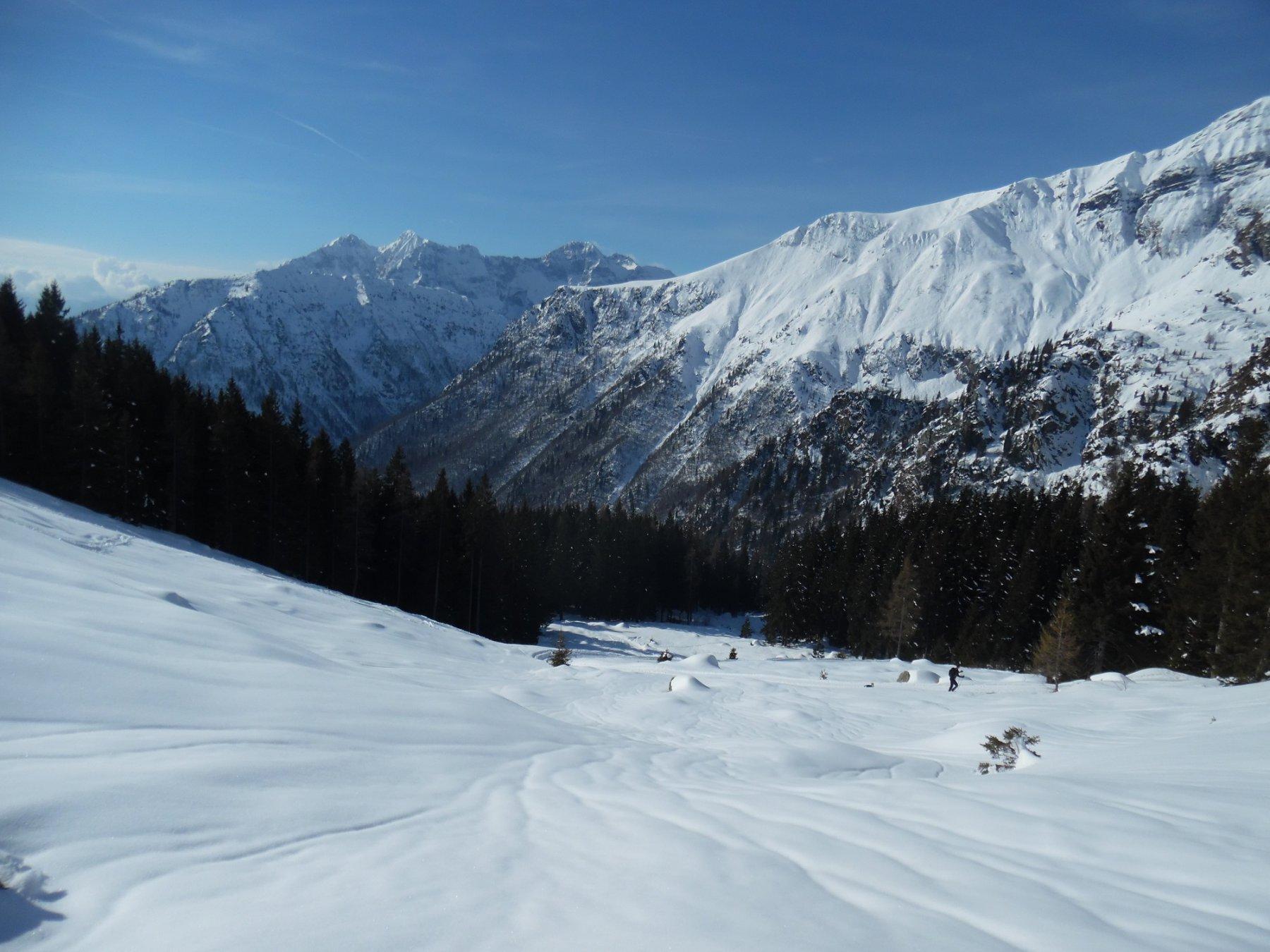 Dal bosco all'alpeggio della Baita Agnone