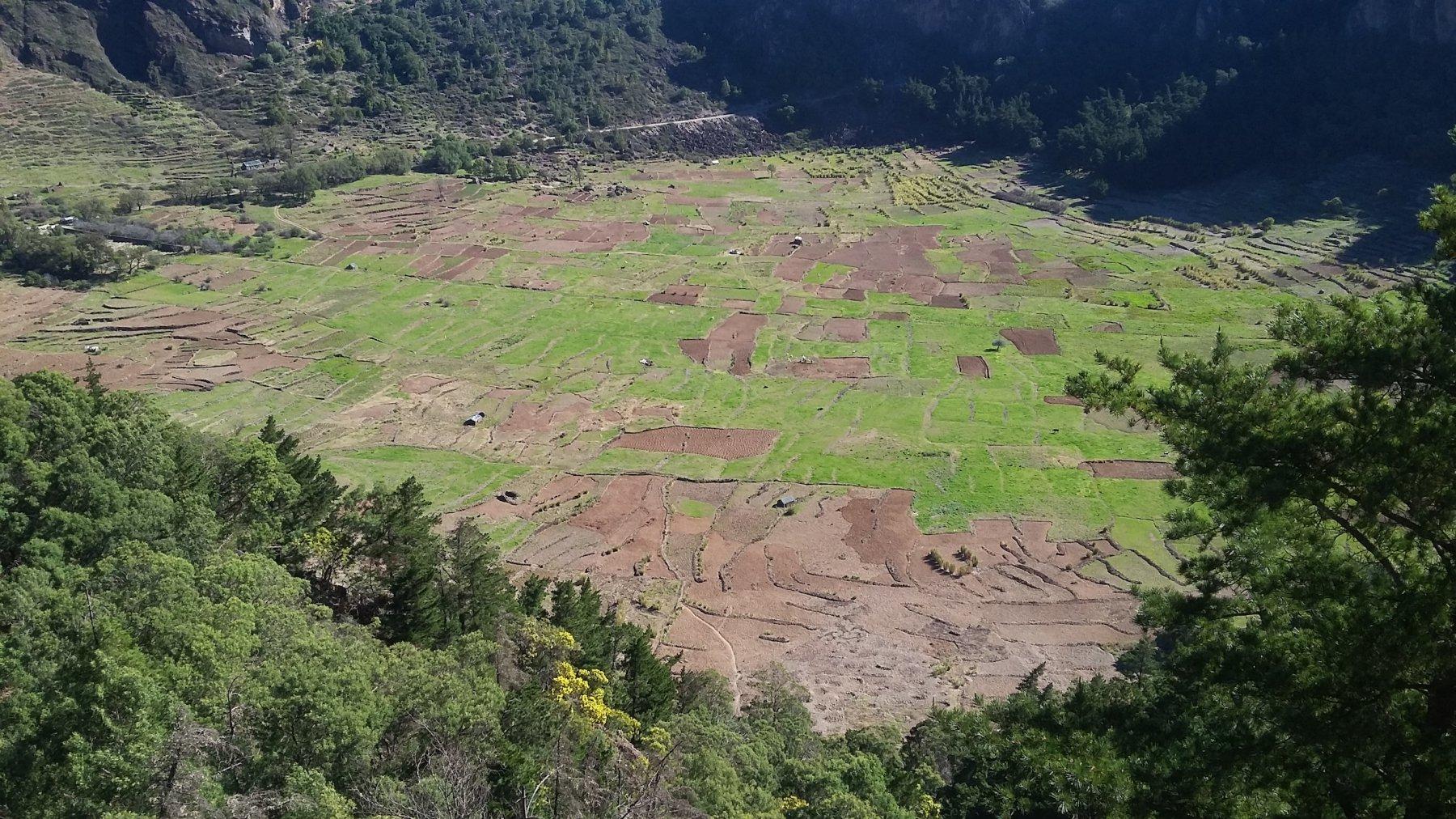 il cratere coltivato di Cova