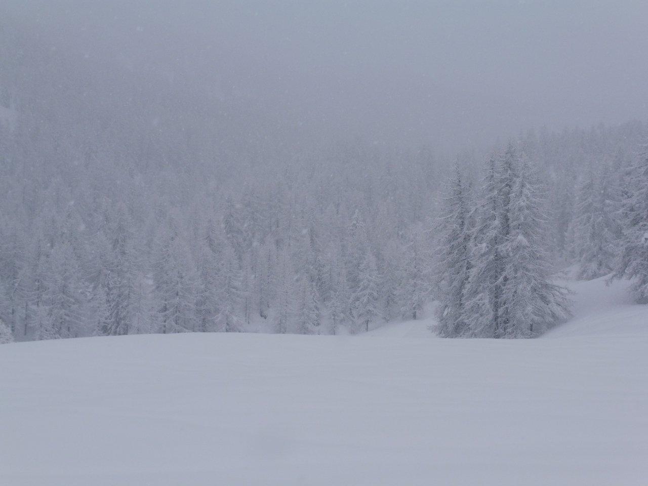 Nella zona di Fonte Tana sotto la nevicata