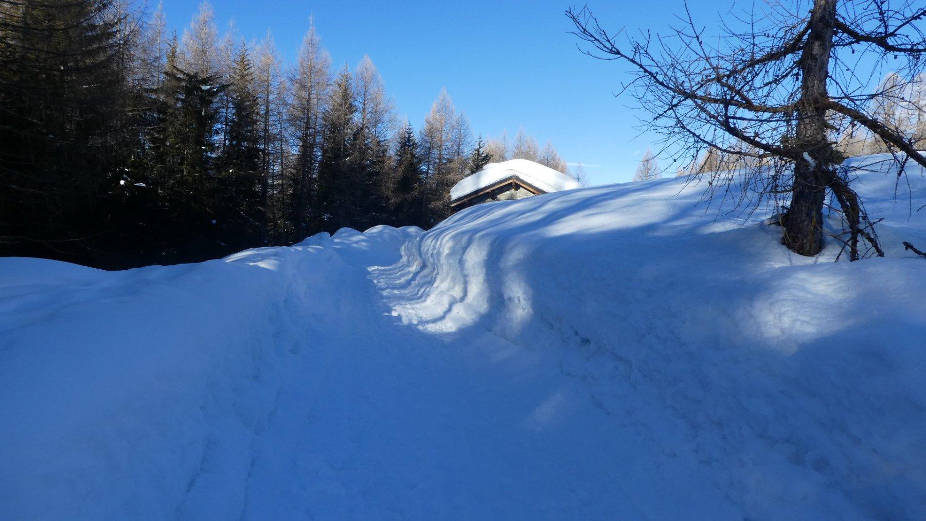 Quanta neve ..!!