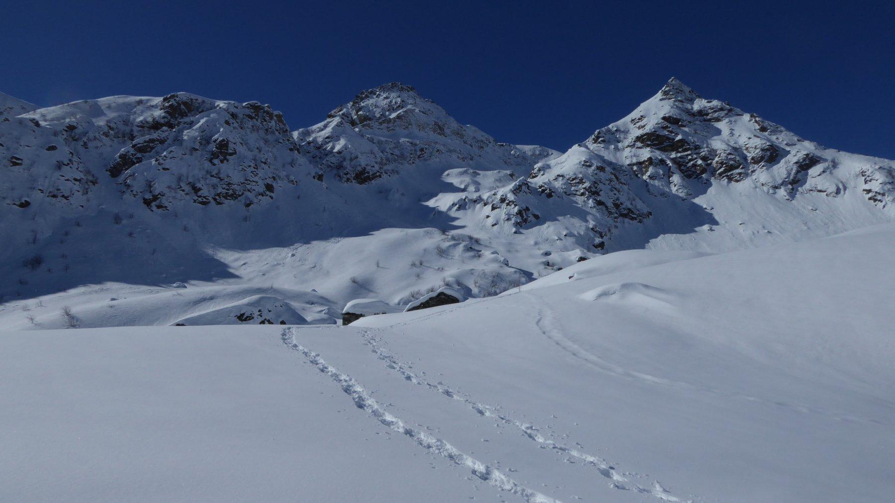 Alpe Pratofiorito