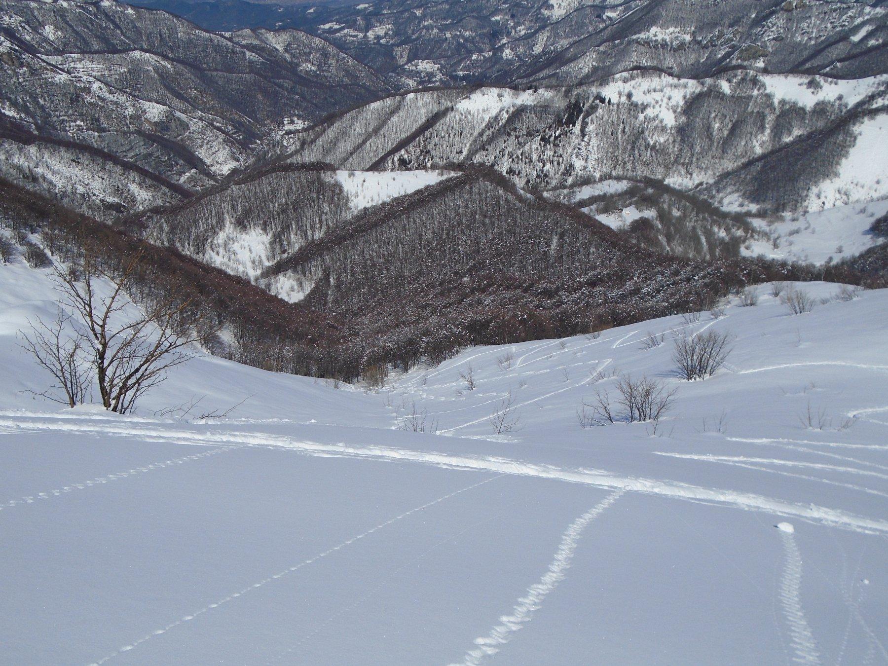 Tanta neve ancora bella fino al bosco