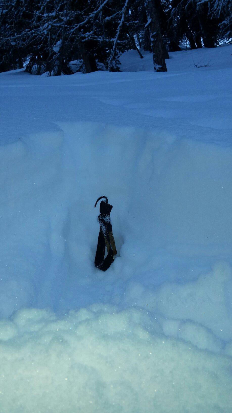 bastoncino piantato nella neve