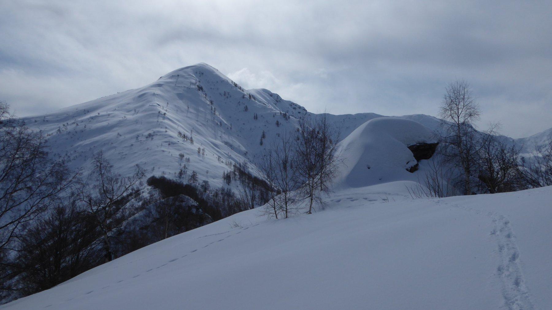 Cucuzzolo del Der del Mont e Monte Cimeron da sfondo