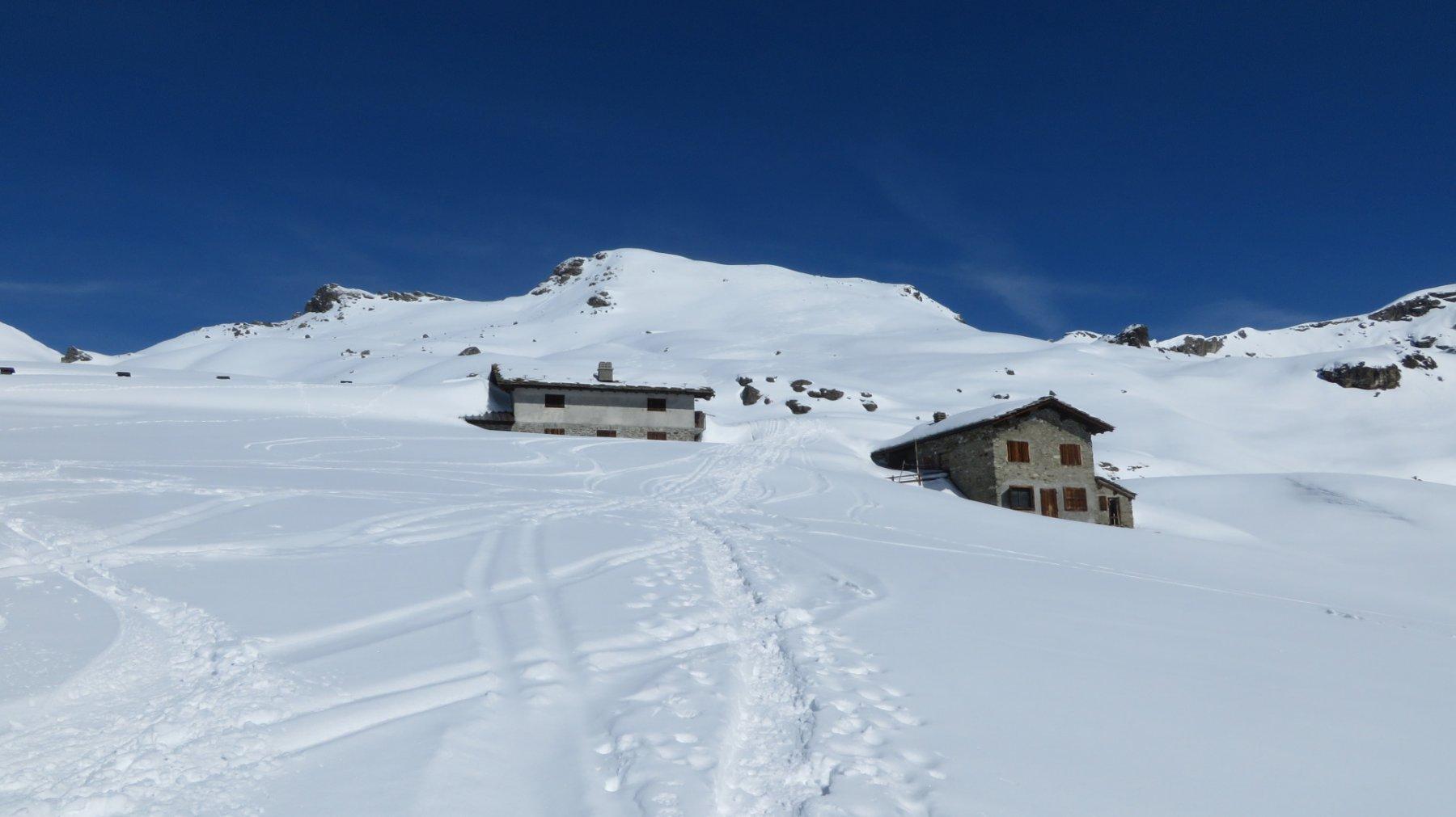 Alpe Palasina