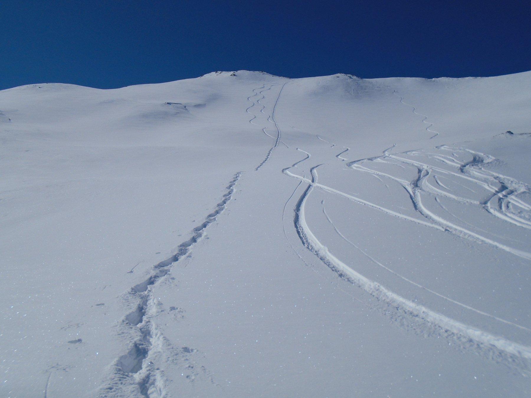 Discesa diretta dalla vetta scialpinistica
