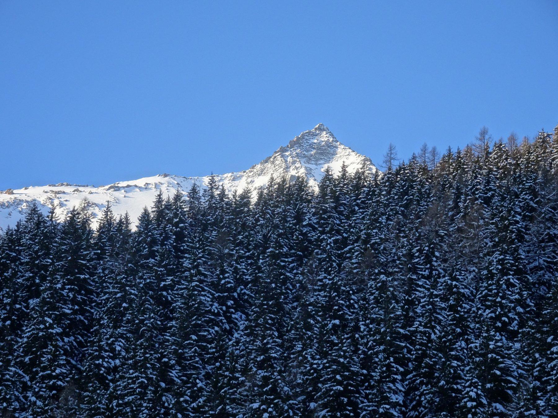 la punta che si vede non è che  l'inizio della cresta che conduce verso sud alla cima