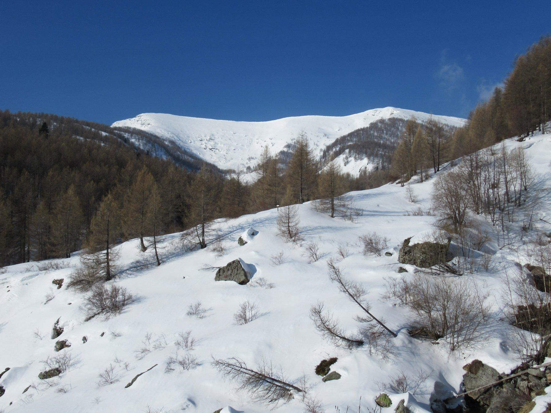 Monte Bertrand e Cima di Velega dalle Case Nivorina.