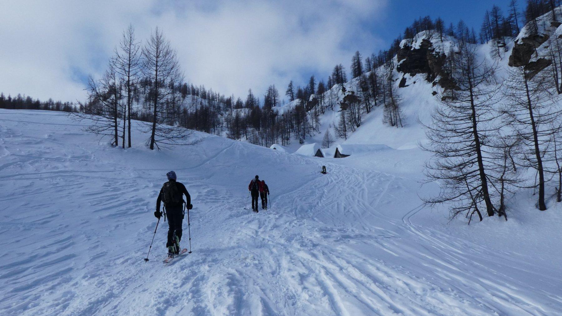 salendo verso l'Alpe Misanco