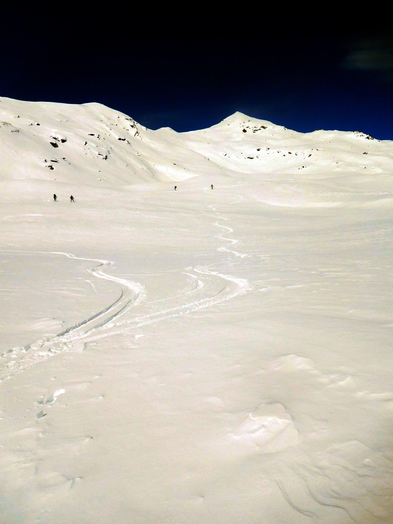 neve bella da cercare nella parte mediana