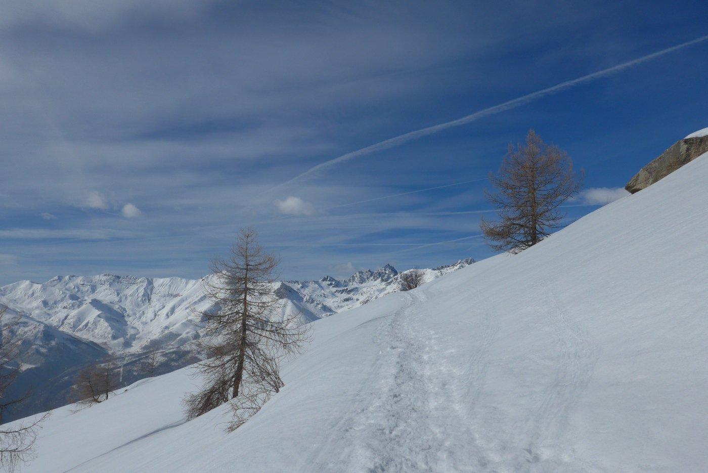Buona traccia su tanta neve