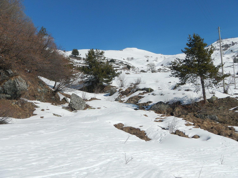 poco oltre Alpe Piano Vinassa