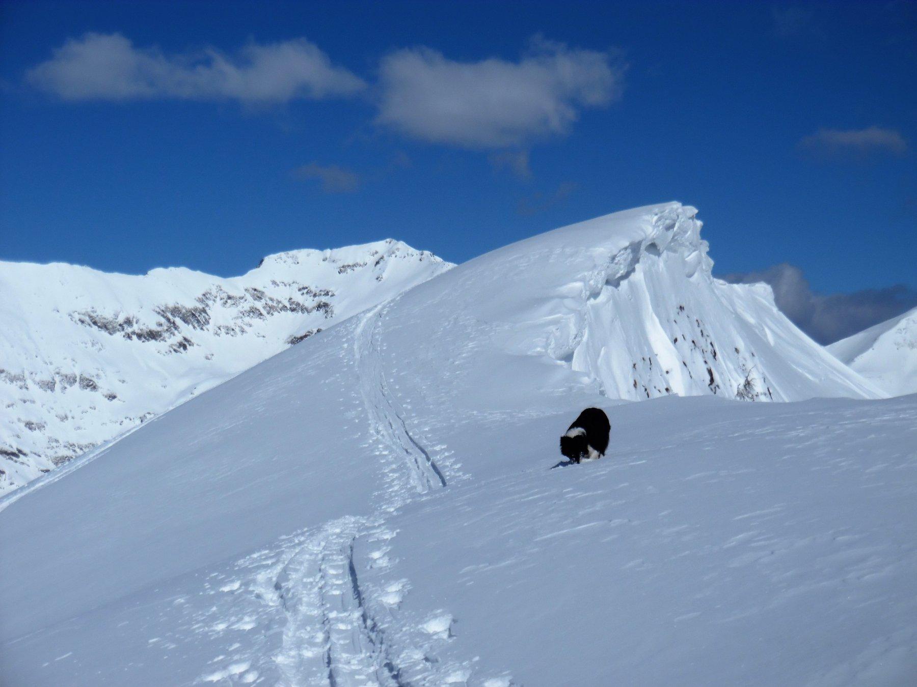 Monte Gardena 2117 m