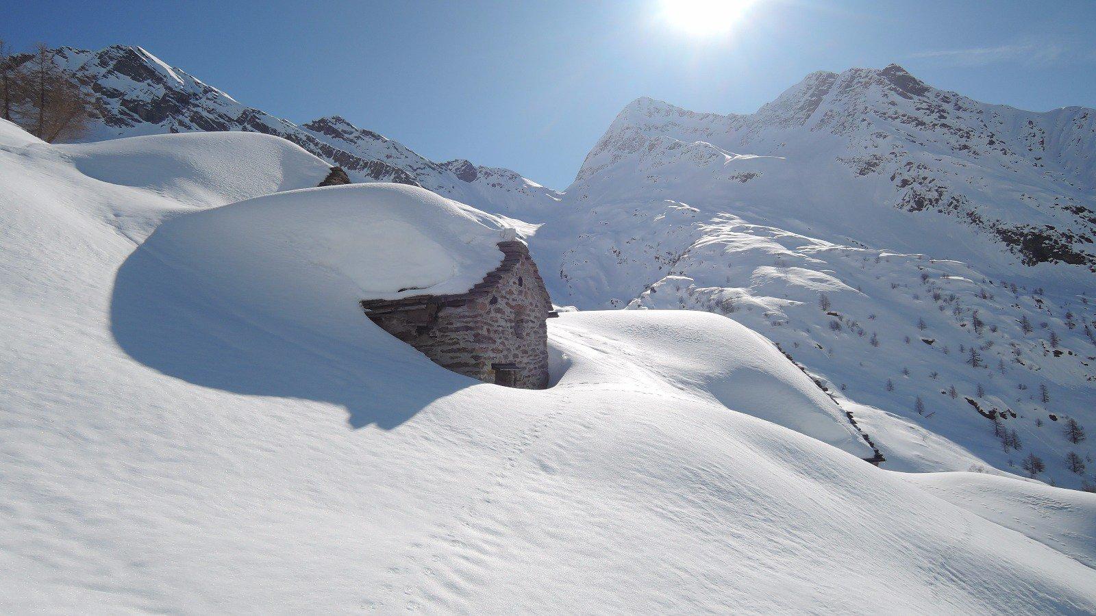 Alpe Faller