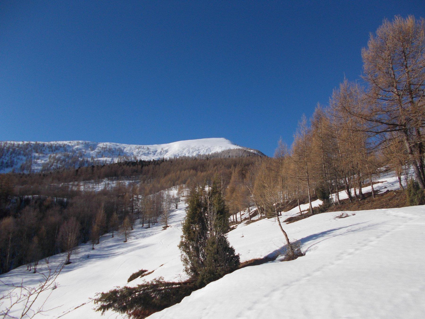 Il Monte Salancia