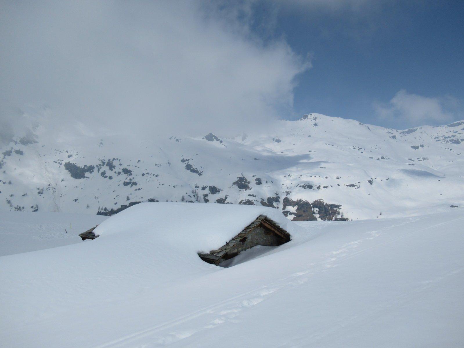 Alpe Litteran