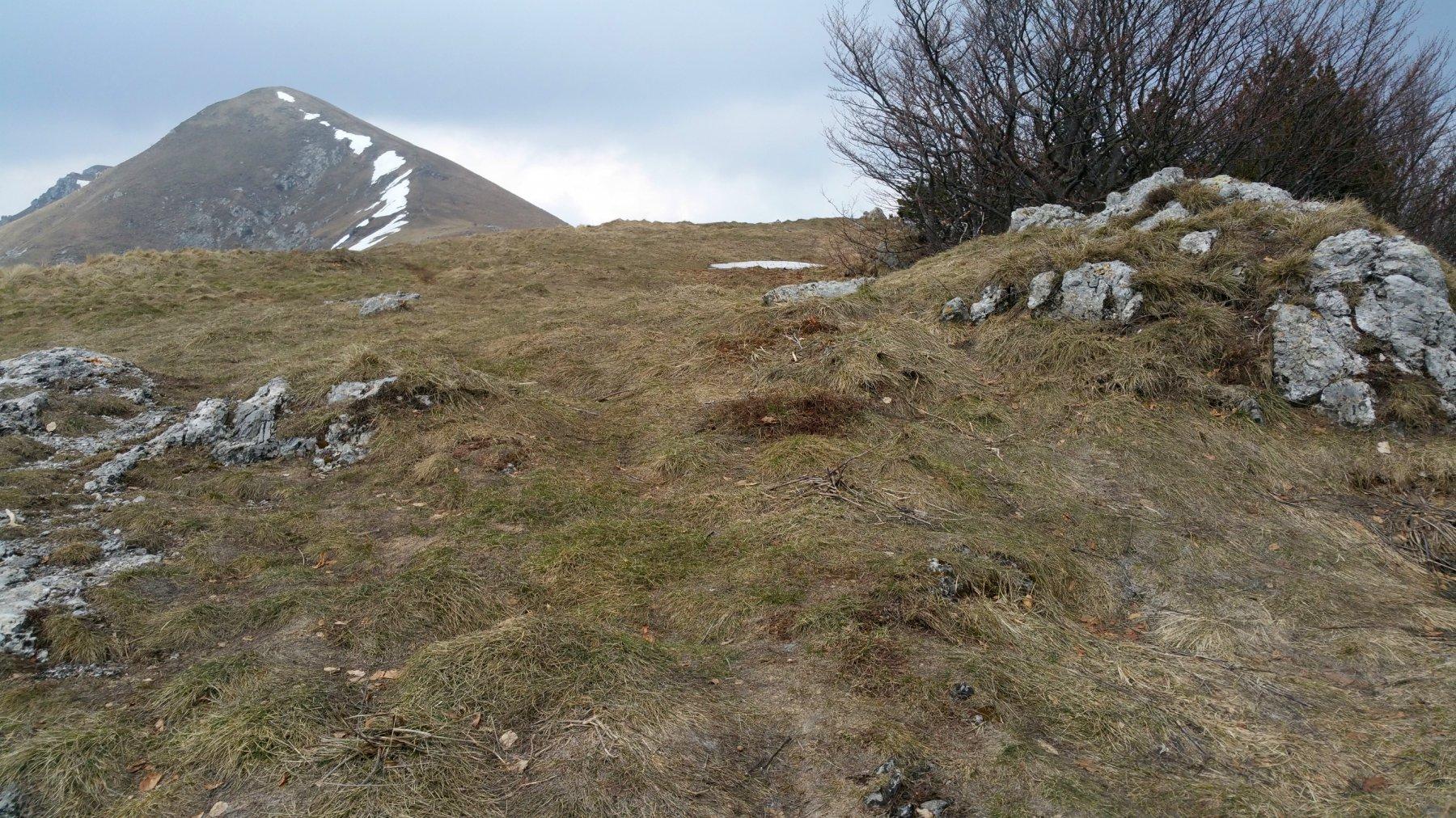 La cresta è praticamente sgombera da neve