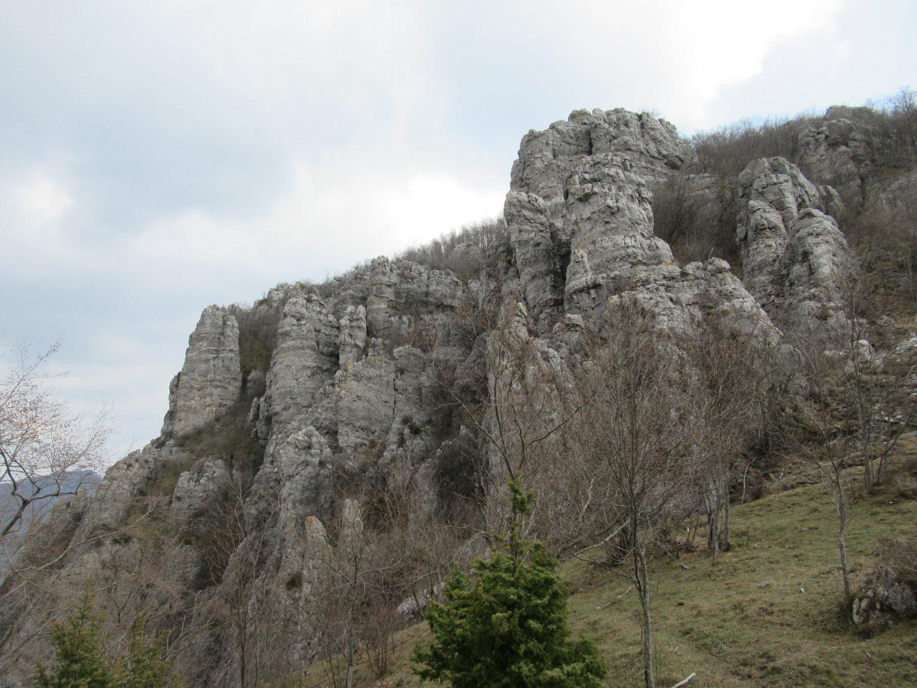 Giardino di Monte Nero dalla Colla di Curenna.