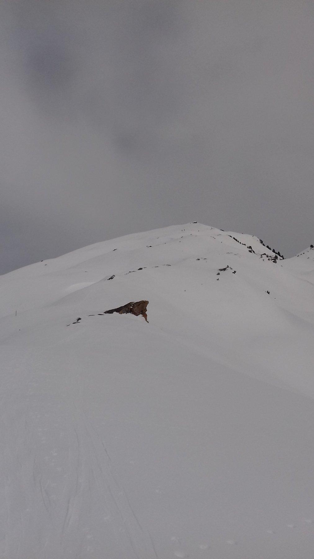 Cresta Savaresch