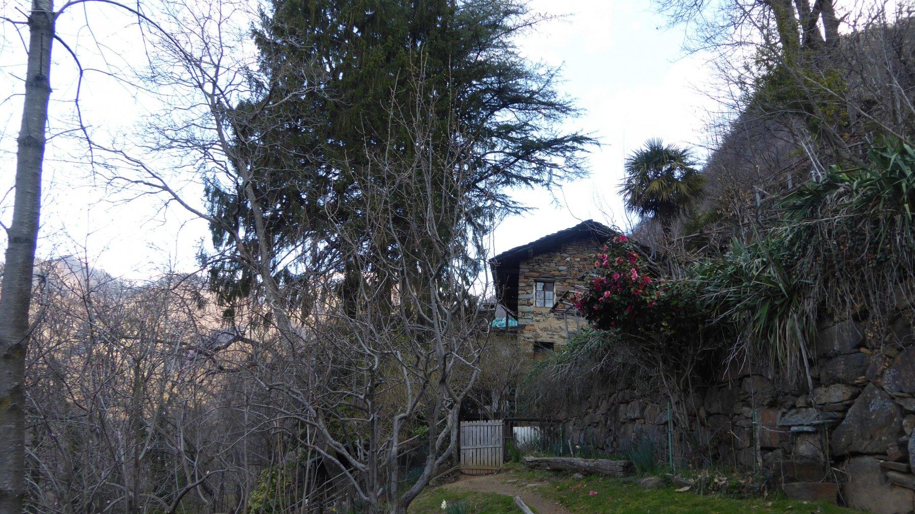 Borgo Camus